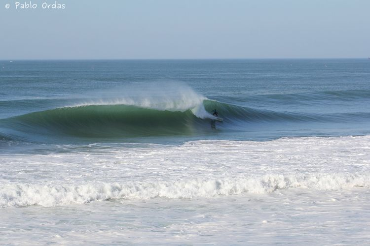 Surf 4 coin